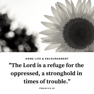 Psalm 9_9-10 The Lord is a refuge for the oppressed, a stronghold in times of trouble.